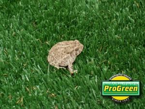 自然な風合いの人工芝